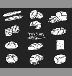 Bread glyph icons set vector