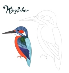 Educational game connect dots draw kingfisher bird vector