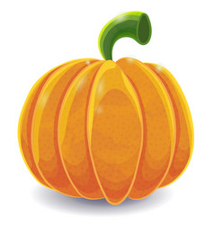 isolated cartoon pumpkin on white vector image