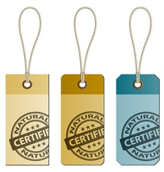 Natural cardboard tags vector