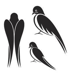 Swallow vector