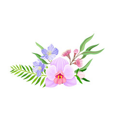 Violet orchid bloom with labellum and floral vector