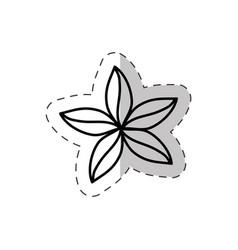 flower natural ornate cut line vector image vector image