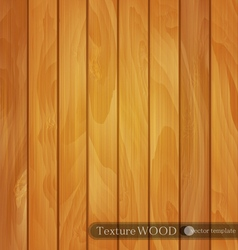 wood background- texture of light brown wooden vector image vector image