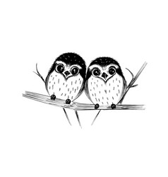 cute couple of owls on branch isolated on white vector image