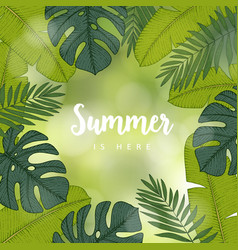summer greeting card invitation frame made of vector image