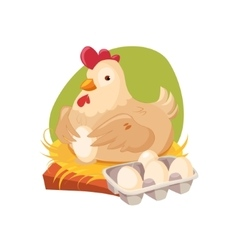 Chicken Nesting Laying Fresh Eggs Farm And vector image vector image