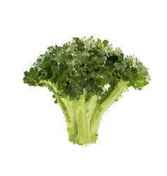 Broccoli head of blots vector
