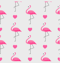 colorful pink flamingo seamless pattern background vector image