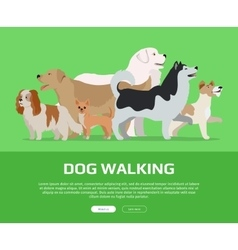Dog Walking Concept Flat Style Web Banner vector