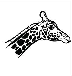 Giraffe head 2 vector