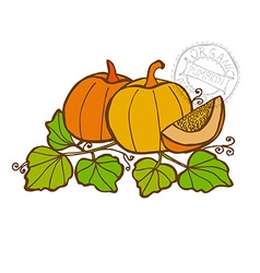 Hand drawn vegetable vector