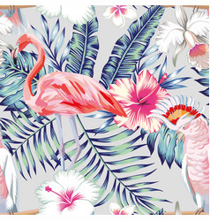 orchid hibiscus flamingo parrot pattern light vector image