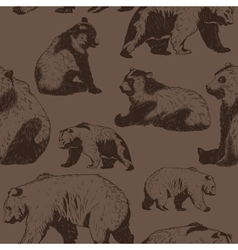 Pattern with wild bear vector