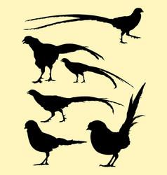 pheasant birds animal silhouette vector image