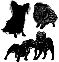 set of dog silhouettes isolated on white vector image