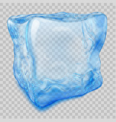 transparent light blue ice cube vector image