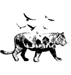 Hand drawn Tiger for your design wildlife concept vector image