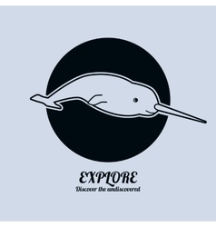 A narwhal Minimalist vector