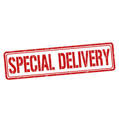 special delivery sign or stamp vector image