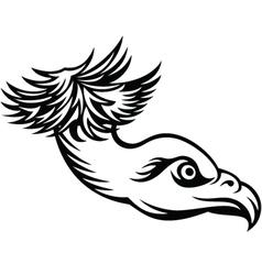 Head of predatory bird vector image