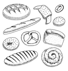 bread and pastry donut long loaf baguette and vector image