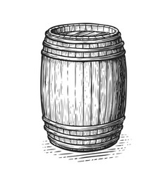 oak wooden barrel hand drawn engraving style vector image