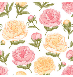 Seamless background with peony flowers vector