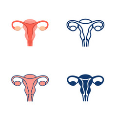 uterus and ovaries icon set in flat and line style vector image