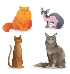 Cat Breeds set vector image vector image