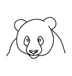 animal panda icon design clip art line icon vector image