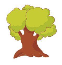 cartoon tree with green leaves oak isolated on vector image