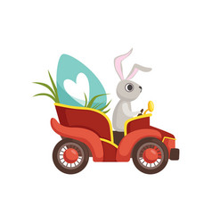 cute bunny driving vintage red car decorated with vector image