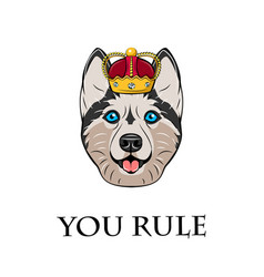 husky in crown vector image