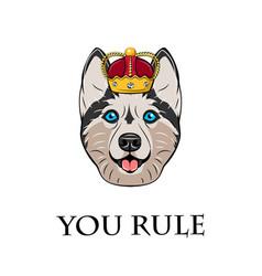 Husky in crown vector