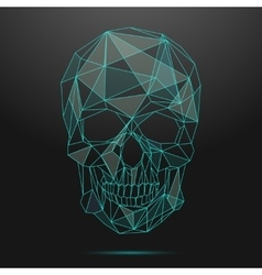 Low poly skull Thin line skull vector image