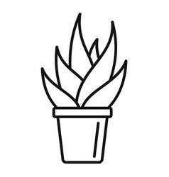 Office succulent pot icon outline style vector