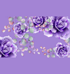 purple roses watercolor background violet vector image