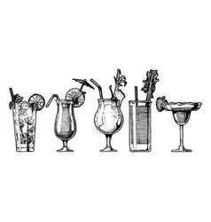 Set of alcohol cocktail vector