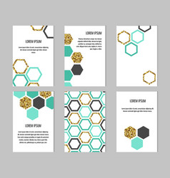 set templates with hexagons vector image