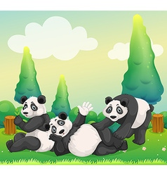 Three pandas playing in the park vector image