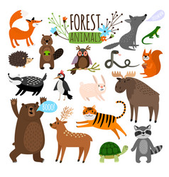 forest animals set vector image vector image