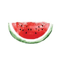 watercolor watermelon vector image vector image