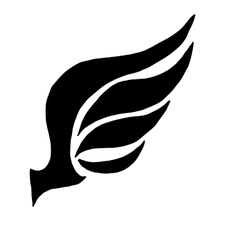 wing concept for logo vector image vector image
