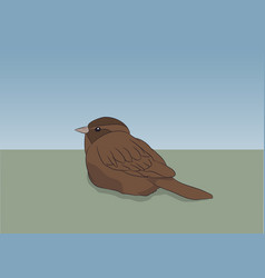 brown sparrow sitting is on nature vector image