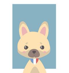 fawn french bulldog vector image