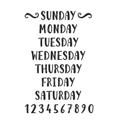 handwritten grunge lettering days of the week vector image