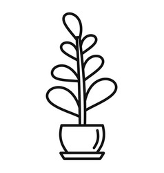 Jungle houseplant icon outline style vector
