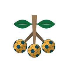 Soccer ball fruit sport flat design icon vector
