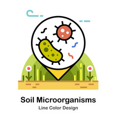 Soil microorganism line color icon vector